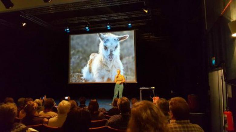 North Atlantic Native Sheep & Wool Conference 2016